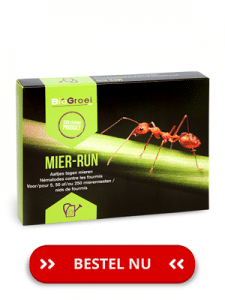 BioGroei-mier-run